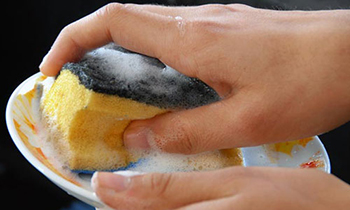 image of a cleaning sponge