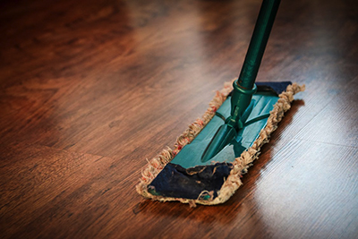 image of a mop